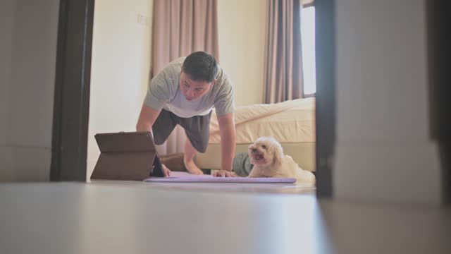 asian chinese mid adult man workout push-ups home exercise workout at bedroom during evening using digital tablet together with his dog - bodyweight training stock videos & royalty-free footage
