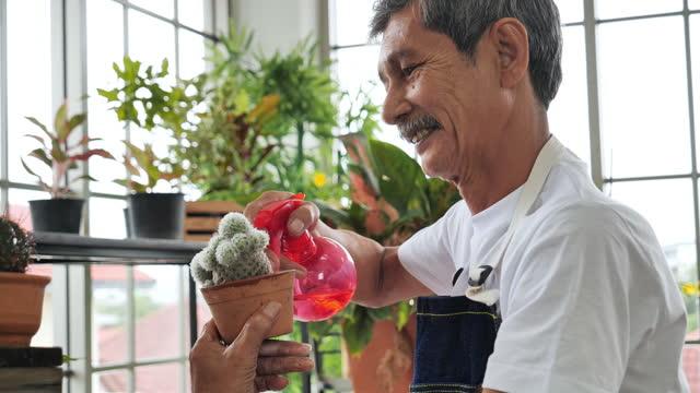 アジアの長老たちは、レジャーで木を植え、装飾しています, シニアアダルト, 中小企業, 農家, 庭, 所有者, 男性. - hobbies点の映像素材/bロール