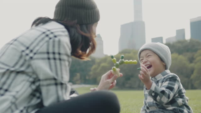 asian family in central park, nyc - lush video stock e b–roll