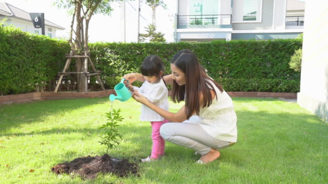 asian family mother and kid daughter plant sapling tree and watering outdoors in nature spring for reduce global warming growth feature and take care nature earth. people kid girl in garden background. - watering stock videos & royalty-free footage