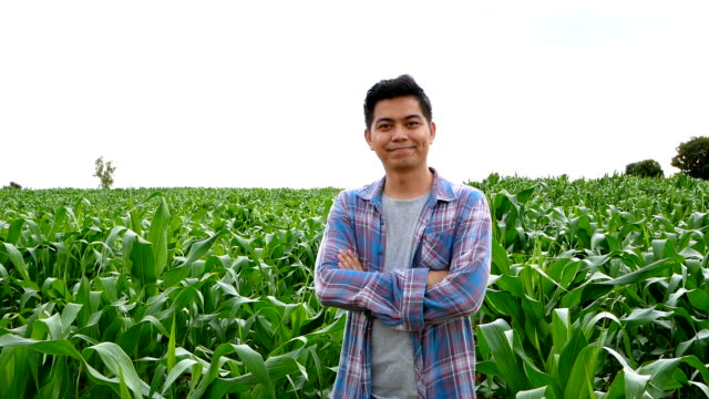 Asian Farmer cross one's arm and thumb up in corn field