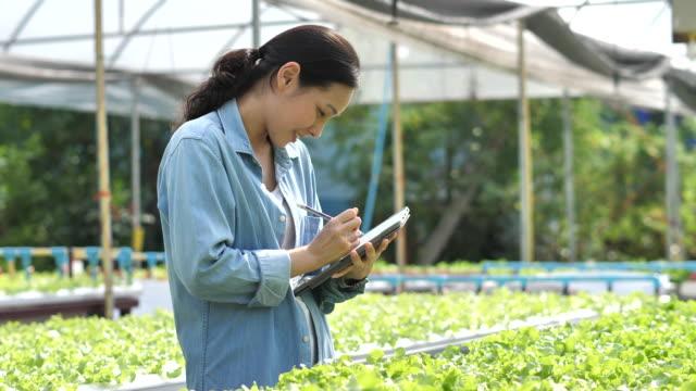 asiatische landwirt in ihrem hof verwendet einen tablet-computer - weibliche person stock-videos und b-roll-filmmaterial