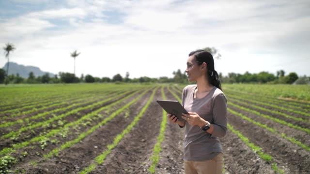 農場でデジタルタブレットを使用してアジアの農家, クローズアップ - 農学者点の映像素材/bロール