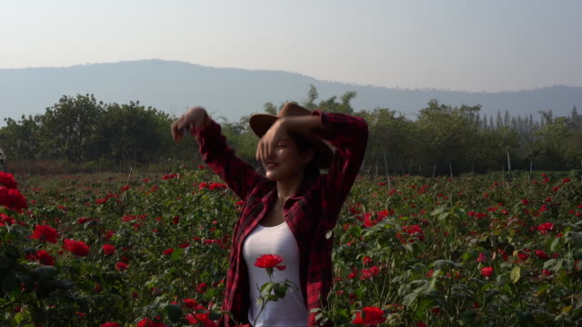 asian farmers woman happy woman with hands up standing in the rose bush in rose garden. - formal garden stock videos & royalty-free footage