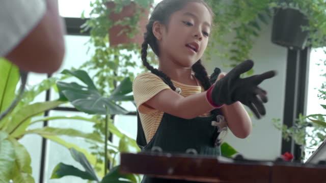 vidéos et rushes de jardinage asiatique de fille dans la serre chaude - famille avec un enfant