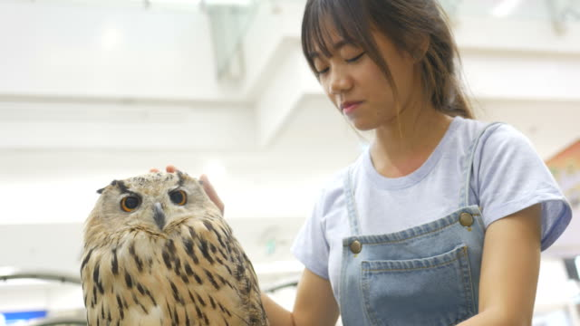 Asian girl play with big owl
