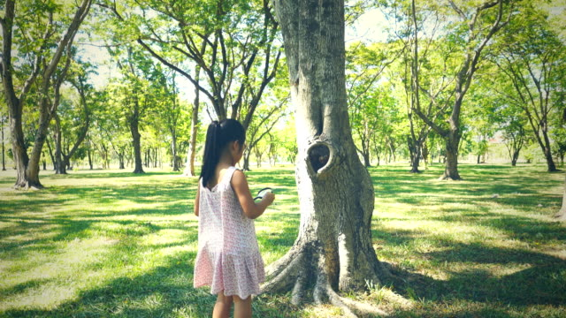 Asian girl Study nature by looking at through magnifying glass in park