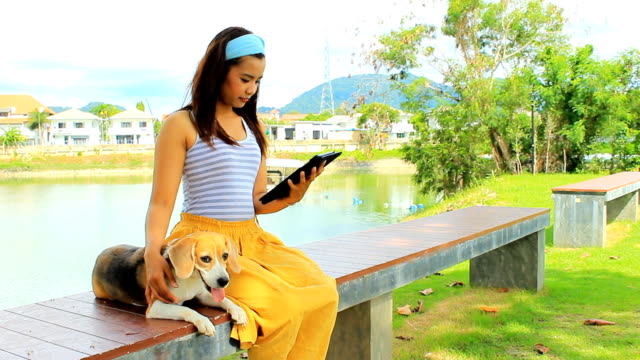 asian girl using digital tablet with her dog - bench stock videos and b-roll footage