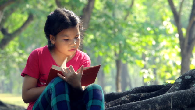 asian girls sits and reads a book under the tree - branch stock videos & royalty-free footage