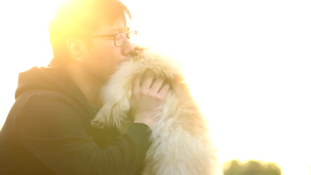 vídeos de stock e filmes b-roll de slo mo - asian holding and kissing his dog - cachorro