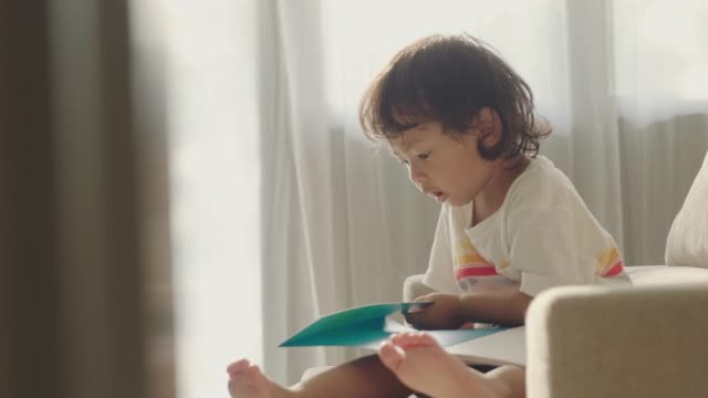 stockvideo's en b-roll-footage met aziatische kleine jongen het lezen van een boek op de bank - prentenboek