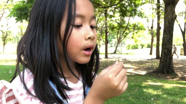 asiatisk liten flicka som leker, blåser mask ros blomma i trädgården - endast flickor bildbanksvideor och videomaterial från bakom kulisserna