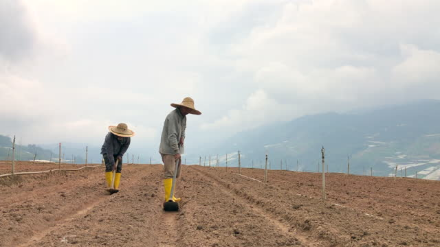 asian male farmers use garden hoe digging the soil fields on hill - plough stock videos & royalty-free footage