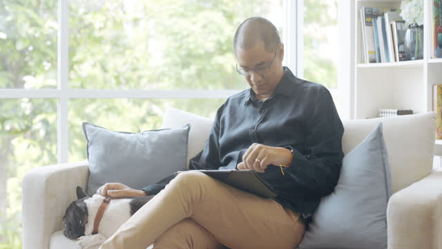 vídeos de stock e filmes b-roll de asian man browsing his digital tablet with his dog, stroking her. - one mature man only