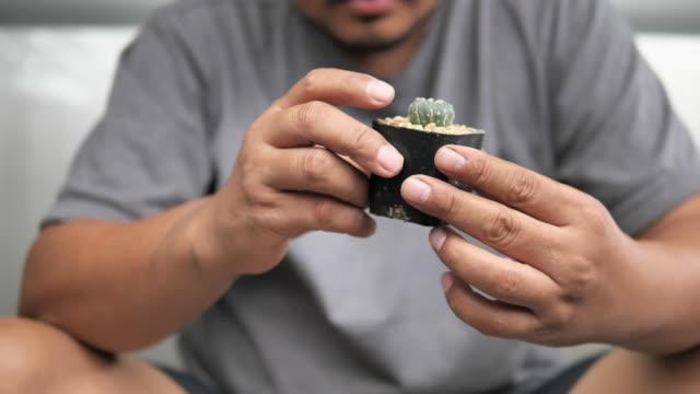 vidéos et rushes de homme asiatique cactus collecteur plantant l'arbre vert dans le nouveau pot dans le jardin d'arrière-cour à la maison. nouveau concept de style de vie normal - cactus pot