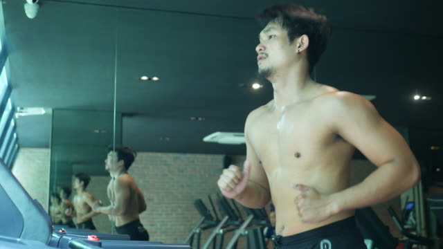 asian man exercising in fitness - arm curl stock videos and b-roll footage
