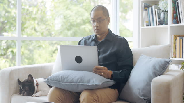 vídeos de stock e filmes b-roll de asian man playing with his dog and using laptop. - one mature man only