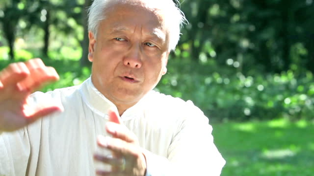 asian man practicing tai chi - solo un uomo anziano video stock e b–roll