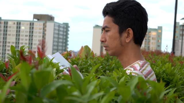 stockvideo's en b-roll-footage met aziatische mens die een boek leest, dat een boek bij openlucht omgooit - mid volwassen mannen