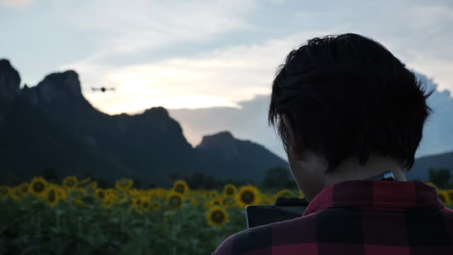 asian man standing flying a drone in sunflower field - ラジコン点の映像素材/bロール