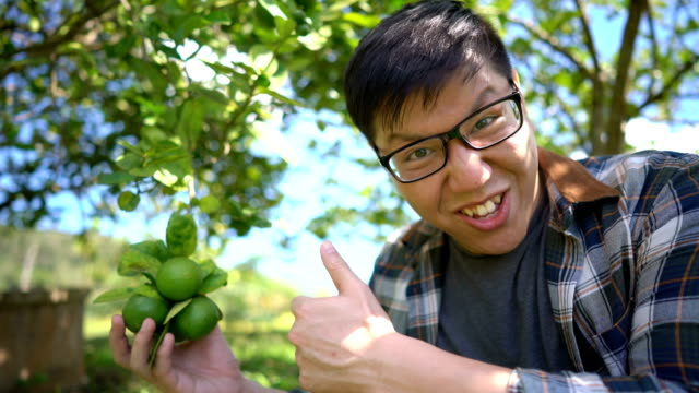 asian man surprise with local agriculture product (lime) - lime stock videos & royalty-free footage