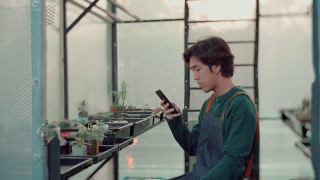 アジアの男は、植物に写真を撮り、チェック - ガーデニング点の映像素材/bロール