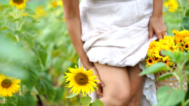 asian mature woman in sunflowers field , scratching legs, itch , allergy - damaged stock videos & royalty-free footage