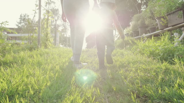 asian mother walking and holding hand with her little boy in farm at sunnset. - family with one child stock videos & royalty-free footage