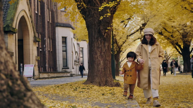 asian mother walking and holding hand with her little boy in ginkgo park at sunset - ginkgo stock videos & royalty-free footage