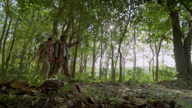 vidéos et rushes de famille asiatique multi génération se démenant dans la forêt et enseigner aux petites-filles à étudier la nature, la famille camping concept.top vue 4k séquences au ralenti. - senior dynamique