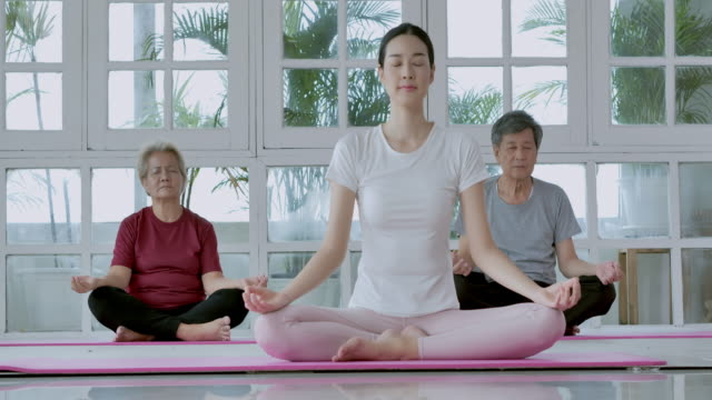 1 029 Seniors Exercise Class Videos And Hd Footage Getty Images
