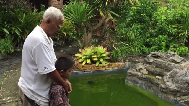 小さな男の子を持つアジアの老人は池で鯉の魚を見ます - 見渡す点の映像素材/bロール