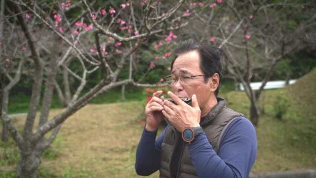 asian older men perform in nature - sad old asian man stock videos & royalty-free footage