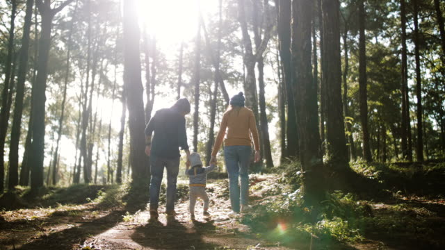 stockvideo's en b-roll-footage met aziatische ouders en baby wandelen langs in een forest - footpath