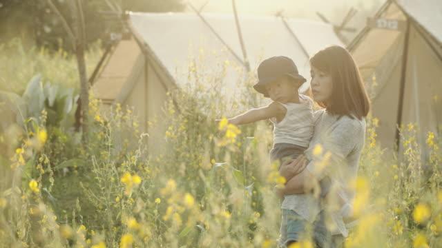 asiatischen eltern heben baby im wald im herbst - exploration stock-videos und b-roll-filmmaterial