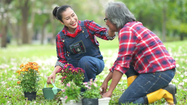 asian senior couple growing flowers together in garden - 60 69 years stock videos & royalty-free footage