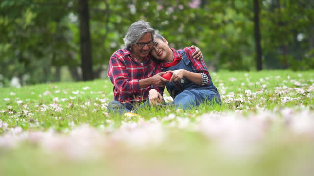 asian senior couple relaxation together in garden , heart shape gesturing - 60 69 years stock videos & royalty-free footage