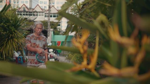 stockvideo's en b-roll-footage met aziatische hogere mens die huisplanten thuis water geeft. - kamerplant