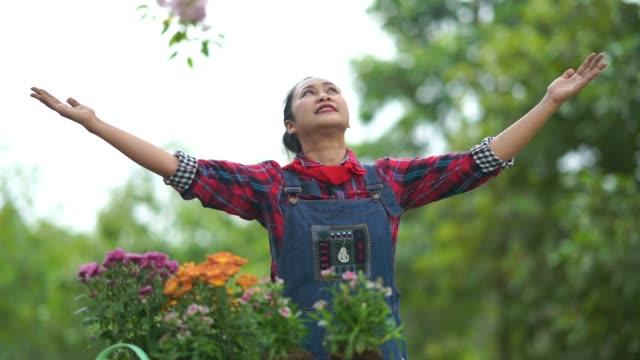 vídeos de stock, filmes e b-roll de flores crescentes asiáticas da mulher sênior no jardim, braços esticados - mãos estendidas