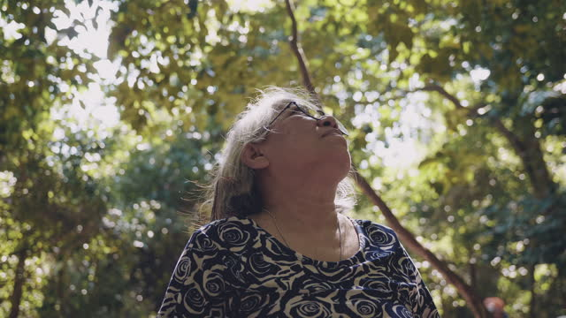 asian senior woman in the forest. - named wilderness area stock videos & royalty-free footage