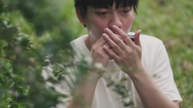 asiatiska låtskrivare spelar munspel på garden - låtskrivare bildbanksvideor och videomaterial från bakom kulisserna