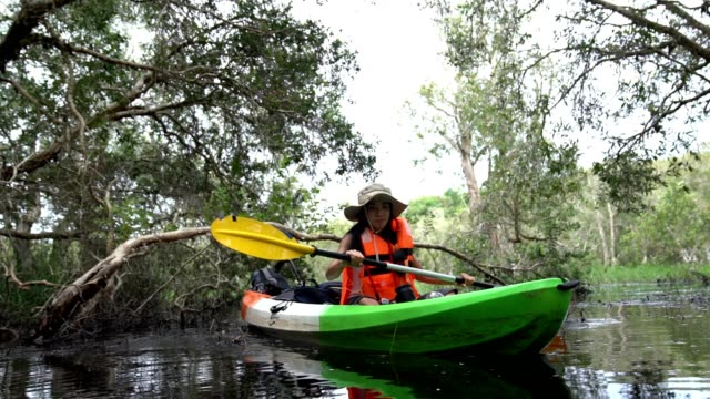 asian surveyor teen group surveyor nature the tropical forest by using a canoe. - kayaking stock videos & royalty-free footage
