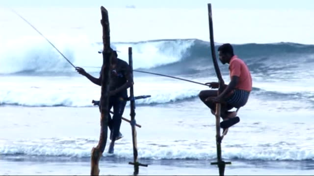 10th anniversary orphaned brothers return to sri lanka peaceful beach fisherman sitting on stilts on beach forkan brothers helping to dig foundations... - stilts stock videos and b-roll footage