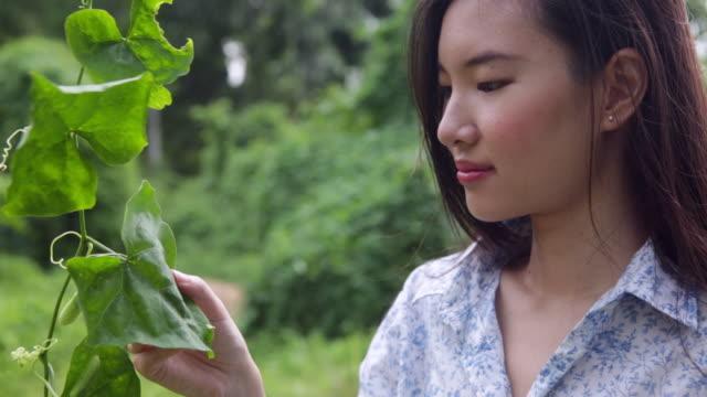 cu asian woman appreciating nature. - 中国人点の映像素材/bロール
