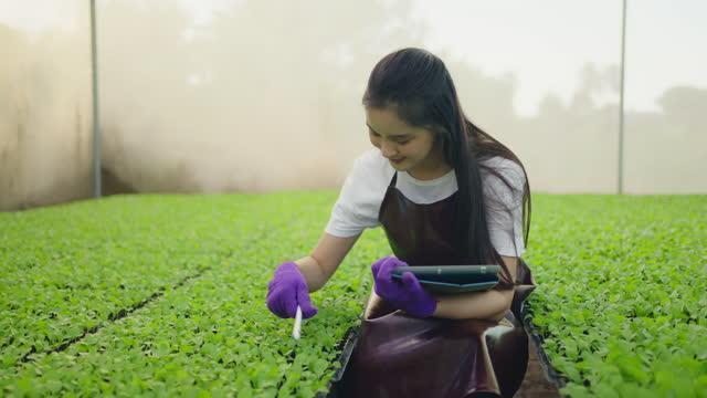 asiatisk kvinna som kontrollerar tillstånd efter tablett. - koreanskt ursprung bildbanksvideor och videomaterial från bakom kulisserna