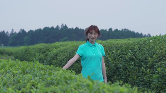 asian woman drinking mineral water in tea plantation - one teenage girl only stock videos & royalty-free footage