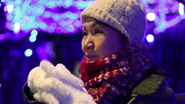 Asian woman enjoying Nakameguro holiday lights in the winter in Minato-Ku, Tokyo, Japan