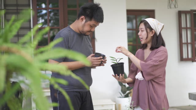 asian woman explaining stuff to a man while holding flower pot - community garden stock videos & royalty-free footage