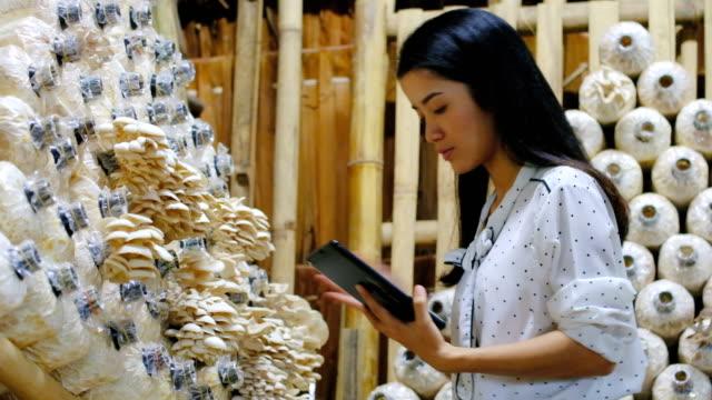 Asiatische Frau Bauer mit A Digital Tablet In The Field, intelligente Landwirtschaft und Technologie-Konzept