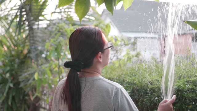 asian woman hand watering with tree in garden home. - squirting woman stock videos and b-roll footage